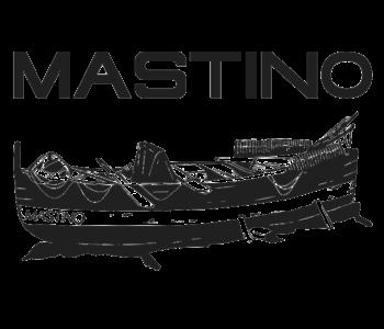 cropped-logomastino.png